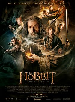 Le Hobbit : la Désolation de Smaug - FRENCH BRRIP