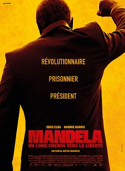 Mandela : Un long chemin vers la liberté - FRENCH BDRip