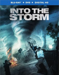 Black Storm - FRENCH BDRiP 720p