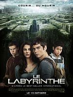 Le Labyrinthe - TRUEFRENCH BDRip