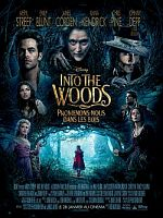 Into the Woods - FRENCH BDrip