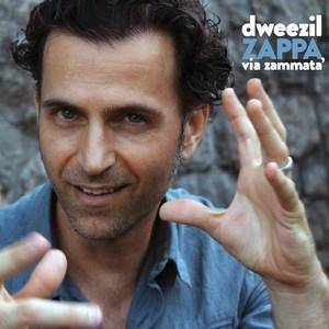 Dweezil Zappa-Go With What You Know
