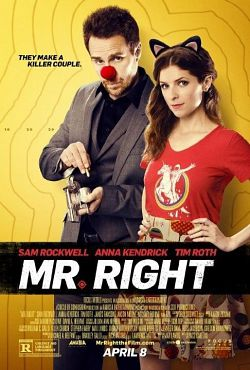 Mr. Right - FRENCH (2016)