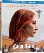 Lady Bird  - TRUEFRENCH BluRay 720p