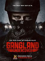 Gangland Undercover - Saison 01 FRENCH 720p