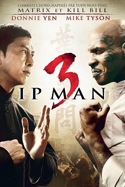 Ip Man 3 2015  MULTi VFF 1080p BluRay x264