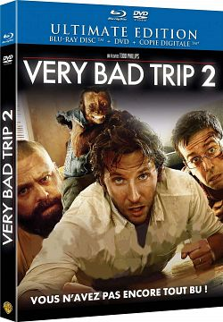 very bad trip 2 truefrench dvdrip
