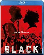 Black - TRUEFRENCH BluRay 1080p x265