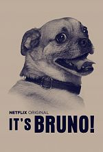 It's Bruno ! - Saison 01 MULTi 1080p