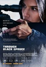 Through Black Spruce - FRENCH HDRiP