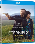 Les Éternels (Ash is purest white) - FRENCH HDLight 720p