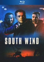 South Wind - TRUEFRENCH BluRay 1080p