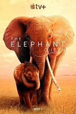 The Elephant Queen - FRENCH HDRip