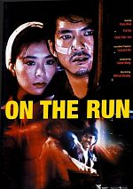 On the Run - MULTi DVDRiP