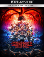 Stranger Things - Saison 02 MULTI 2160p