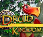 Druid Kingdom - PC