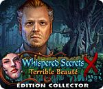 Whispered Secrets : Terrible Beaute - PC