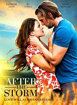After The Storm - TRUEFRENCH WEBRiP