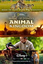 Au cœur de Disney's Animal Kingdom