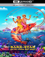 Barb & Star Go to Vista Del Mar - MULTI WEB 4K