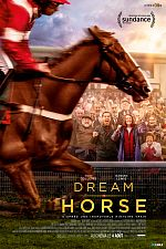 Dream Horse - FRENCH HDRiP MD
